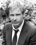 Harrison Ford Fotografia