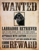 Black Lab Wanted Poster Plåtskylt