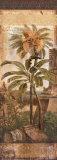 Antilles II ポスター : ダグラス・ジョン