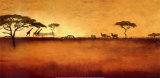 Serengeti I Poster av Tandi Venter