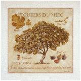 Figuiers du Midi Posters tekijänä Pascal Cessou