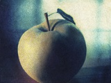 Green Apple Photographic Print by Jennifer Kennard