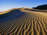 Sand Dunes in Death Valley Photographic Print by Bill Ross