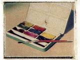 Paintbox by Jennifer Kennard Photographic Print by Jennifer Kennard
