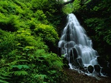 Fairy Falls Photographic Print by Bill Ross