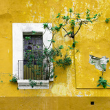 ¡Viva Mexico! Square Collection - Old Yellow Facade II Fotografie-Druck von Philippe Hugonnard
