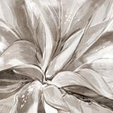 Cereus Aloe - Fawn Reproduction procédé giclée par Tania Bello