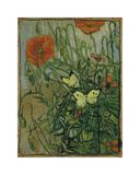 Butterflies and Poppies Premium Giclée-tryk af Vincent van Gogh