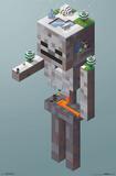 Minecraft- SkeletonTundra Pôsters