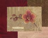 Hakalau Queen (Orchidee) Poster von Stephanie Marrott