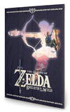 Zelda Breath of The Wild Silhouette Treskilt