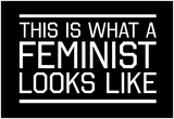 This Is What A Feminist Looks Like - WB Lámina