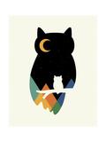 Eye on Owl Giclée-Druck von Andy Westface