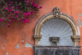 Mexico, Street Fountain Built into a Salmon Colored Wall with Fuschia Flowering Branch Fotografie-Druck von Judith Zimmerman