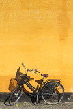 Denmark, Zealand, Copenhagen, Yellow Building Detail with Bicycle Fotografie-Druck von Walter Bibikow
