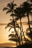 Sunset at Poipu Beach, Kauai, Hawaii Stretched Canvas Print by Michael DeFreitas