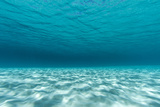 Underwater Photograph of a Textured Sandbar in Clear Blue Water Near Staniel Cay, Exuma, Bahamas Reproduction photographique par James White