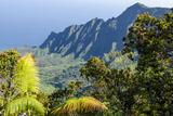 Fern at Overlook of Kalalau Valley, Napali Coast State Park Kauai, Hawaii Fotografisk trykk av Michael DeFreitas