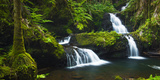 Onomea Waterfalls, Hawaii Tropical Botanical Garden, Hamakua Coast, the Big Island, Hawaii, Usa Reproduction photographique par Russ Bishop