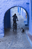 Morocco, Chefchaouen. Bicyclist Rides Past Cat in Archway in the Blue Village of Chefchaouen Fotografisk tryk af Brenda Tharp