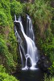 Cascade on the Hamakua Coast, the Big Island, Hawaii, Usa Reproduction photographique par Russ Bishop