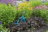 Blue Tricycle in Flower Garden with False Sunflower Reproduction photographique par Richard and Susan Day