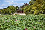 Red Pavilion Lotus Pads Garden Summer Palace Park, Beijing, China Willow Green Trees Photographic Print by William Perry