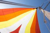 Europe, Italy Mediterranean, Sailboat Spinnaker Colorful Display Premium fotografisk trykk av Trish Drury