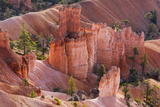 Utah, Bryce Canyon National Park, Bryce Canyon and Hoodoos Reproduction photographique Premium par Jamie And Judy Wild