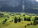 Switzerland, Bern Canton, Grindelwald, Alpine Farming Community Reproduction photographique par Jamie And Judy Wild