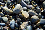 Haida Gwaii Islands, British Columbia. Agates are Found on Many of the Beaches on Graham Island Reproduction photographique par Richard Wright