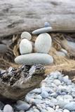 Us, Wa, Dungeness Spit. Rock Cairns on Driftwood Fotografisk trykk av Trish Drury