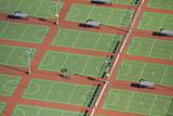 Netball Courts, Auckland Netball Center, Mount Wellington, Auckland, North Island, New Zealand Reproduction photographique par David Wall