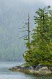 Canada, British Columbia. Inside Passage Scenic Fotoprint van Jaynes Gallery