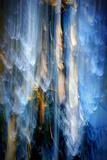 Evening Trees 1 Fotografisk trykk av Ursula Abresch