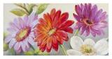 Beautiful Array Affiches par Nel Whatmore