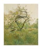 Peach Blossoms - Villiers-le-Bel Giclée-Premiumdruck von Frederick Childe Hassam