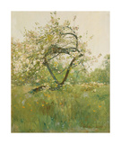 Peach Blossoms - Villiers-le-Bel Premium Giclee Print by Frederick Childe Hassam