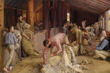 Shearing the Rams Giclée-tryk af Tom Roberts