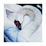 Heart-Centred, 2016 Reproduction procédé giclée par Helen White