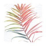 Tropical Blush VI Poster by Lisa Audit