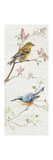 Vintage Birds Panel I Posters by Danhui Nai