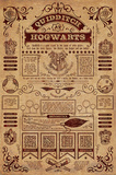 Harry Potter- Quidditch At Hogwarts Infographic Plakater