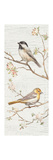 Vintage Birds Panel II Posters par Danhui Nai