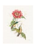 Colorful Hummingbirds I Plakater av Katie Pertiet