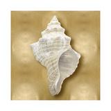 Ocean Gem on Gold I Giclee Print by Caroline Kelly