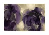 Cascade Amethyst Giclee Print by Kristina Jett