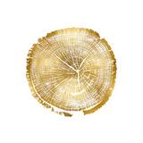 Timber Gold I Giclée-tryk af Danielle Carson