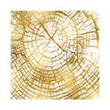 Chopped Gold II Giclee Print by Danielle Carson