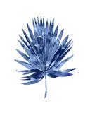 Indigo Palm IV Giclée-tryk af Melonie Miller